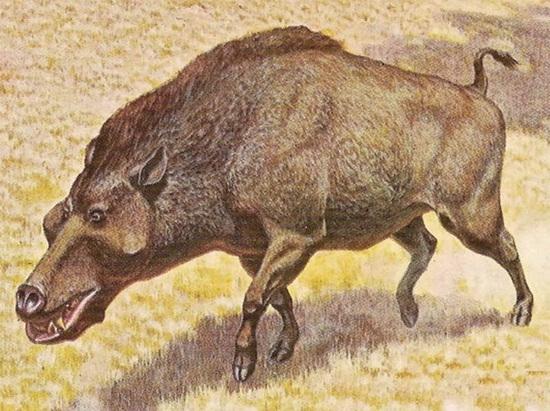 盘点7大巨型灭绝动物